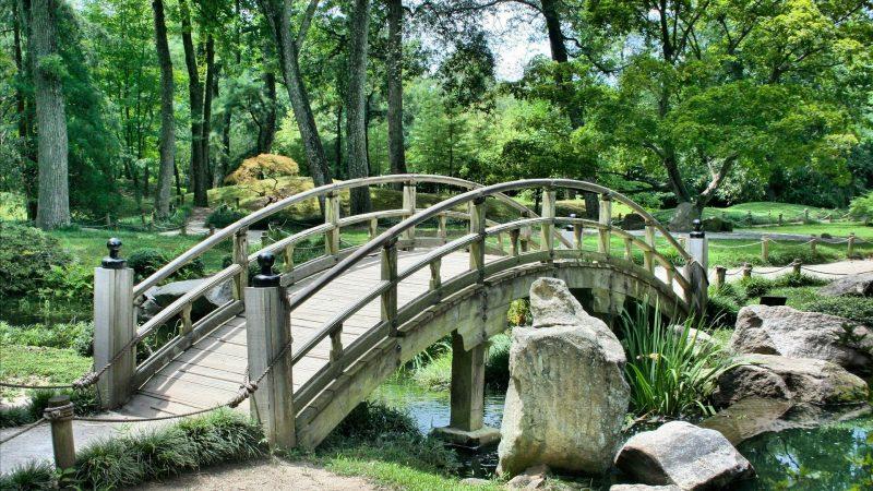 5 raisons pour lesquelles vous devriez faire appel à des experts en aménagement paysager